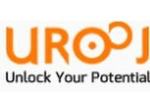 Urooj Corporation - Consultancy
