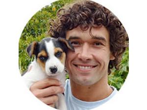 Angelina Joe, Dog Trainer - Pet services