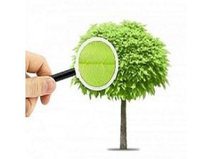 K & S Tree Care, Inc. - Gardeners & Landscaping
