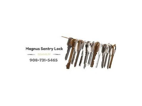 Magnus Sentry Lock - Security services