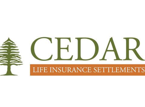 Cedar Life Insurance Settlements - Insurance companies