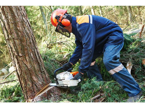 Stillwater Tree Tamers - Gardeners & Landscaping