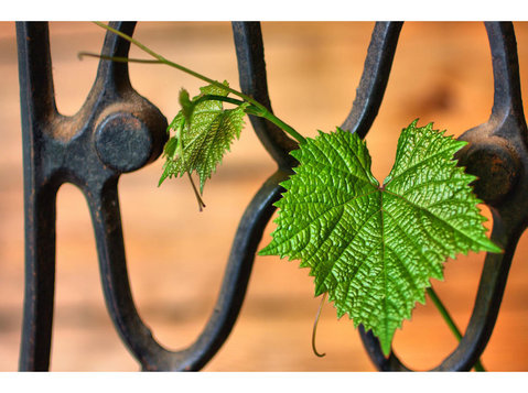 Tulsa Quality Fencing - Gardeners & Landscaping