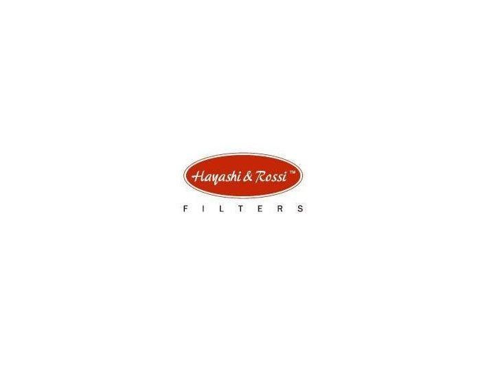 Hayashi & Rossi - Company formation