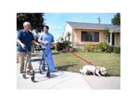 Halo Senior Care (1) - Alternative Healthcare