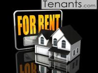 Tenants (1) - Rental Agents