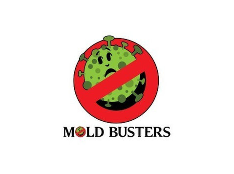 Mold Busters Lewisville - Construction Services