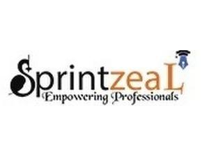 Sprintzeal - Online courses