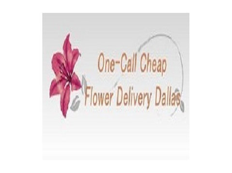 Same Day Flower Delivery Dallas TX  Send Flowers - Gifts & Flowers