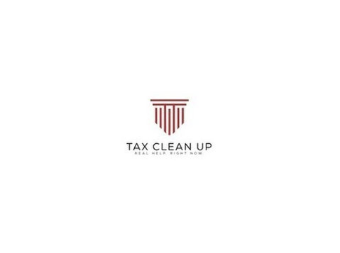 Tax Clean Up - Tax advisors