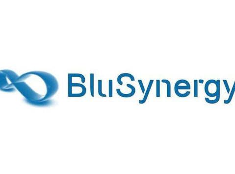Blusynergy - Business & Networking