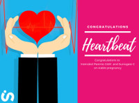 Inclusive Surrogacy (5) - Alternative Healthcare