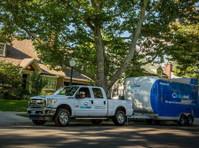 Zippy Shell Northern Virginia (8) - Removals & Transport