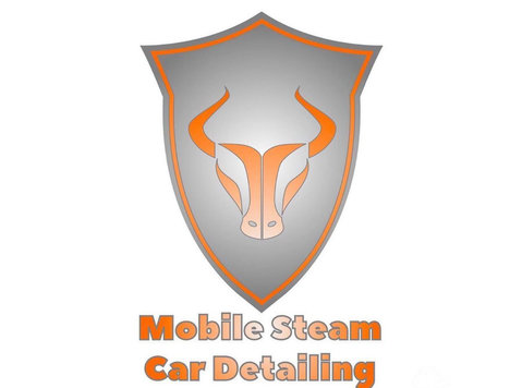 Fairfax Mobile Steam Car Detailing - Cleaners & Cleaning services