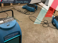 Carpet Cleaning Fort Washington (1) - Cleaners & Cleaning services