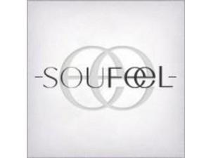 SOUFEEL JEWELRY INC - Jewellery