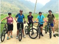 Travelo Vietnam (4) - Reisebüros