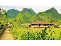 Travelo Vietnam (6) - Reisebüros