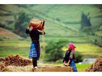 Indochina Explore Tours (8) - Travel Agencies