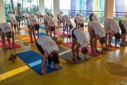 100 Hour Yoga Teacher Training in Italy