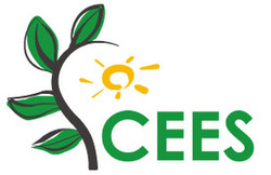 2021 3rd International Conference on Clean Energy and Electrical Systems (cees 2021)