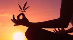 420 Enhanced Meditation / Outdoor Garden Setting