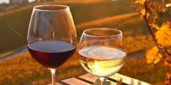 Backstage | Open Wine Omaggio Per I Primi 50 Accrediti #fuorisalone