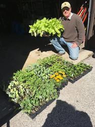 Bay City Cooperative Market Spring Plant Sale