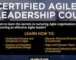 Certified Agile Leadership Course