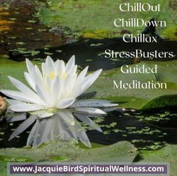 Chillout ChillDown Chillax Renew: StressBusters Guided Meditation