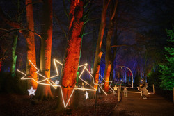 Christmas Trail at Temple Newsam