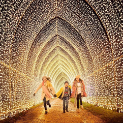 Christmas at Blenheim Palace - The after-dark illuminated trail in The Great Outdoors