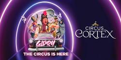 Circus Cortex in Heybridge/maldon Modern Cool Family Show 5 Pounds