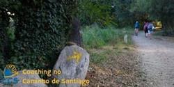 Coaching no Caminho de Santiago - 6ª edição