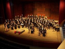 Concert - Cincinnati Youth Wind Ensemble at The Helix Dublin