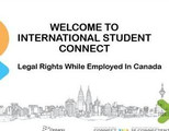 Employment Rights for International Students