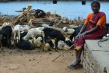 Empowering women farmers with an extraordinary Photo Exhibition