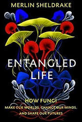 Entangled Life: panel discussion