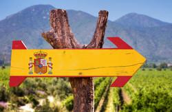 Essential Spanish Wines [Sept 24]