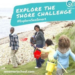 Explore the Shore Summer Challenge