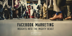 Facebook Marketing: Insights into the Mighty Beast