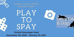 Fancy Cats and Dogs Rescue Team Presents Play to Spay Scavenger Hunt