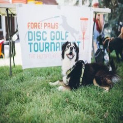 Fore!paws Disc Golf Tournament