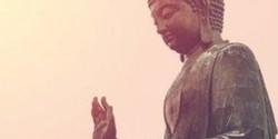 Forgiveness and Gratitude Meditation