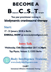 Free Talk on Biodynamic Craniosacral Therapy