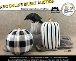 Friends of Special Children Abc Online Silent Auction