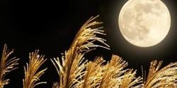 Full Moon Ritual (Harvest Moon)