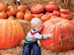Gourdgeous Pumpkins Festival