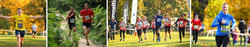 Henley Culden Faw Half Marathon, 10k & 5k Sunday 3 January 2021