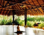 Ignite: A Transformational Yoga Retreat